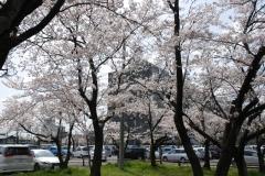 るぴなすビラの近隣(岐阜県庁前)の風景